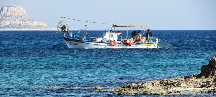 Prospects for the development of fisheries in the Mediterranean Sea