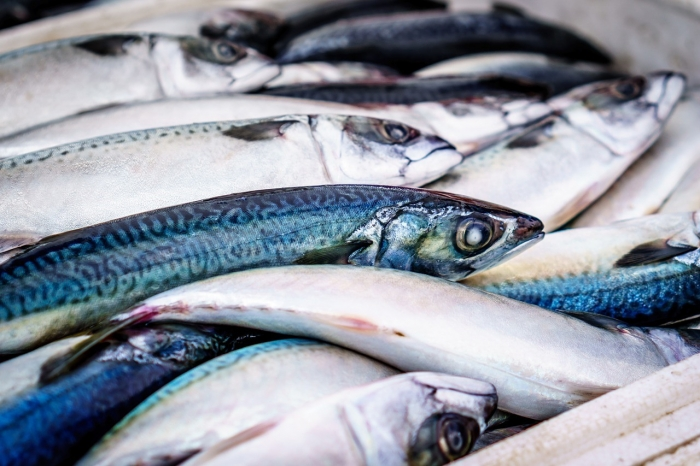 The consumption of fish is increasing in Ukraine